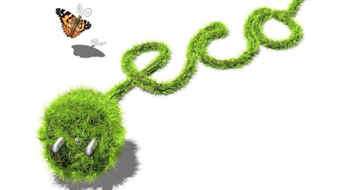 Stromstecker grün Gras Schmetterling Elektro